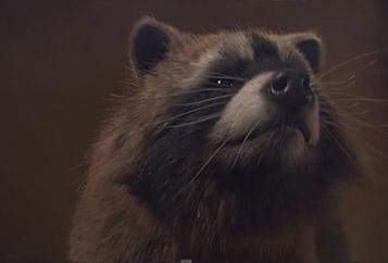 Raccoon Dance Party